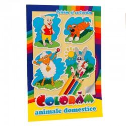 Coloram animale domestice - Privim si coloram