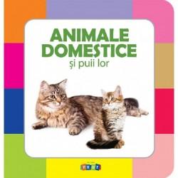 Animale domestice si puii lor – Prima mea carte cu imagini