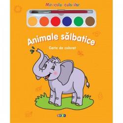 Animale salbatice – Miracolul culorilor