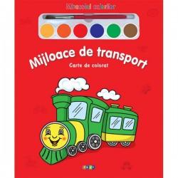 Mijloace de transport – Miracolul culorilor