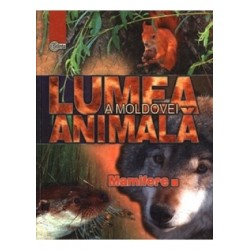 Lumea animala a Moldovei. Vol. 4. Mamifere - Andrei Munteanu