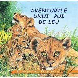 Aventurile unui pui de leu - Sa cunoastem lumea inconjuratoare!