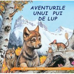 Aventurile unui pui de lup - Sa cunoastem lumea inconjuratoare!