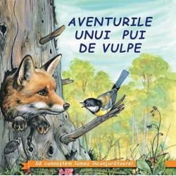 Aventurile unui pui de vulpe - Sa cunoastem lumea inconjuratoare!