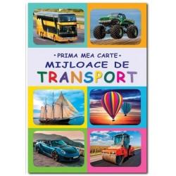 Mijloace de transport - Gutu Irina